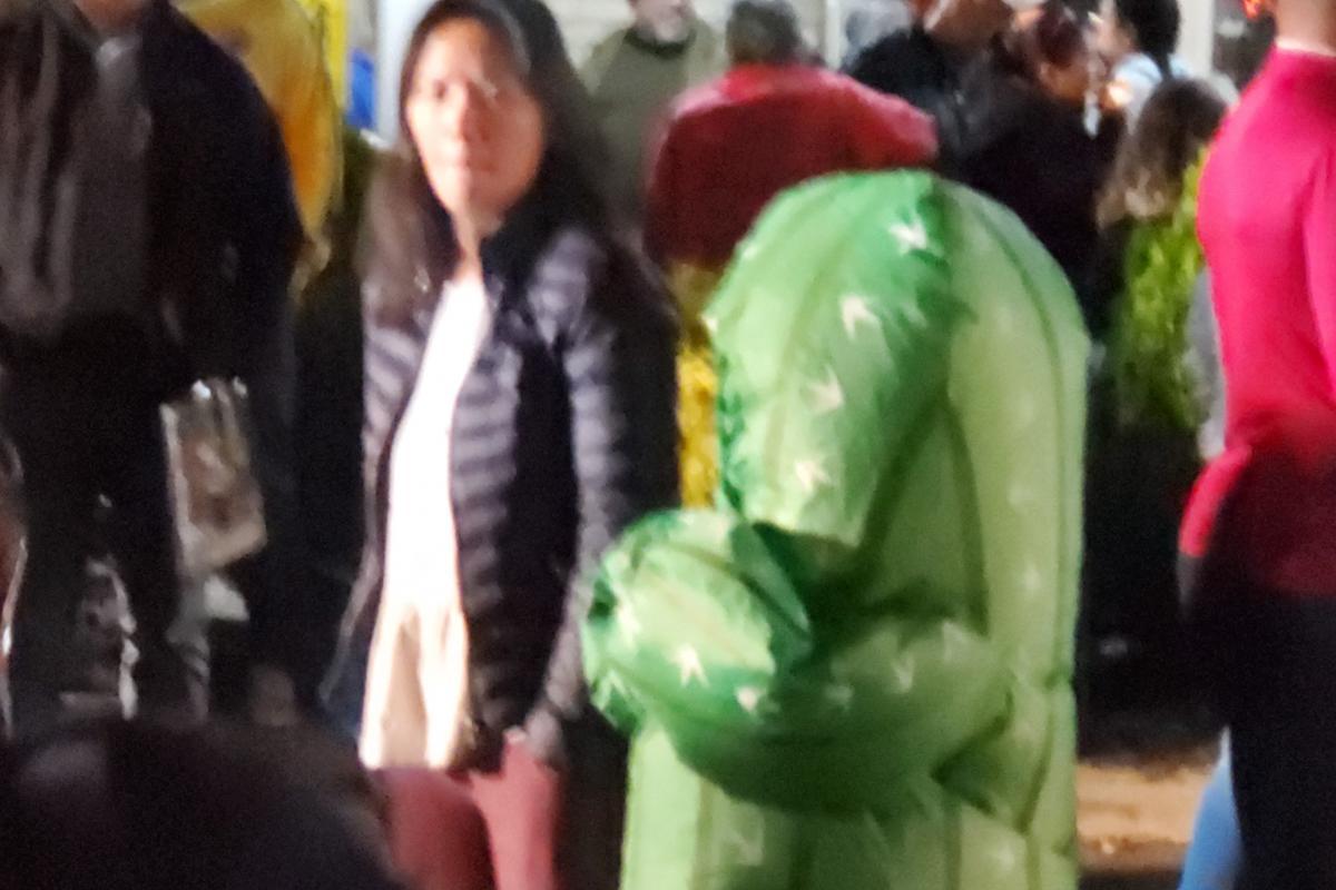 Child dressed in inflatable cactus costume